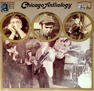 Chicago Anthology By Goldberg Museelwhite And Mandel